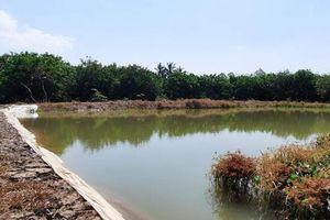 Mùa khô, chủ động nguồn nước