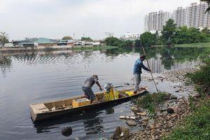 TPHCM: Xuyên trưa vớt hàng ngàn con cá chết trong ao