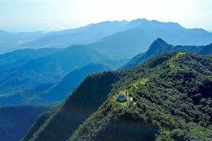 Choáng ngợp trước vẻ đẹp kỳ vĩ của núi rừng Bạch Mã