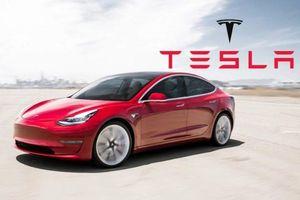 Tesla bàn giao gần 185.000 xe trên toàn cầu trong quý I, gấp đôi cùng kỳ