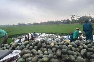 Xe tải chở gần 30 tấn dưa hấu lật đổ xuống ruộng, người dân Hà Tĩnh giúp tài xế thu gom