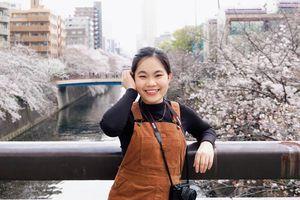 Mùa hoa anh đào đặc biệt ở Nhật Bản