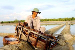 Thành phố Hồ Chí Minh: Thủ tướng công nhận Thạnh An là xã đảo