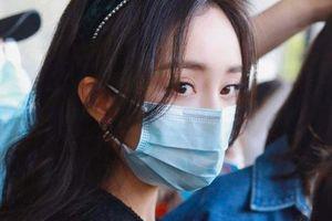 Dương Mịch cosplay truyện tranh gây sốt, ảnh cận đôi mắt to tròn khiến netizen thốt lên quá đẹp
