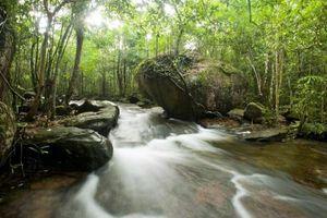 Suối Tranh, bức tranh thiên nhiên ban tặng Phú Quốc