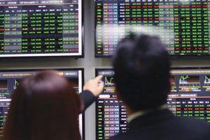 HoSE đưa hàng loạt cổ phiếu như VNS, MHC, DAH, SMA vào diện cảnh báo do làm ăn thua lỗ