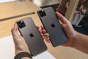 Quên iPhone 12 đi, nhiều mẫu iPhone 11 đang giảm giá cực mạnh, rất đáng để 'chốt đơn'