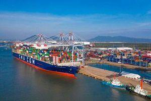 Bà Rịa - Vũng Tàu: 10 dự án cảng biển chậm tiến độ