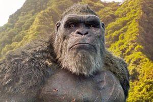'Godzilla vs. Kong': Cứu tinh Hollywood hay chỉ là trường hợp cá biệt?