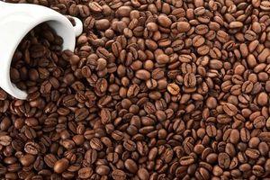 Giá cà phê hôm nay 7/4: Arabica hồi phục mạnh mẽ, Robusta tăng trở lại ngay sau lễ Phục Sinh