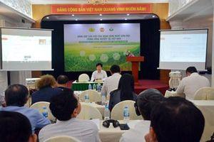 Đóng góp của ứng dụng công nghệ sinh học trong nông nghiệp tại Việt Nam