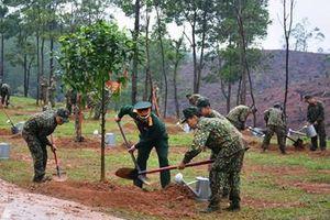 Toàn quân nâng cao hiệu quả việc trồng cây