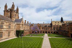 Các trường đại học đào tạo ngành tâm lý học tốt nhất tại Úc
