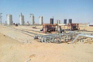 Ai Cập có phát hiện dầu mới