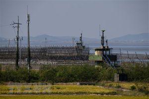 Hàn Quốc cam kết nỗ lực nối lại các cuộc đàm phán liên Triều