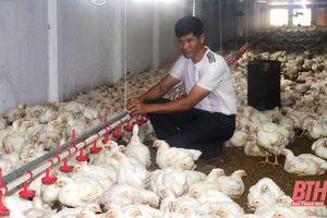 Huyện Quảng Xương tăng cường quản lý chất lượng nông sản