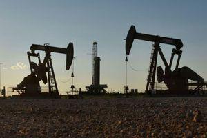 Giá dầu bật tăng nhờ dữ liệu kinh tế khả quan từ Mỹ, Trung Quốc