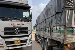Quảng Trị: Chở quá tải 'khủng', tài xế và chủ xe bị phạt gần 50 triệu đồng