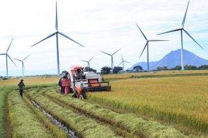 Quý I/2021, Ninh Thuận cấp mới 8 dự án, tổng vốn hơn 25.000 tỷ