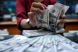 Tỷ giá USD hôm nay 7/4: USD rời xa đỉnh 5 tháng