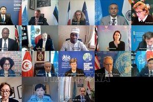 Việt Nam chủ trì cuộc họp của HĐBA về vấn đề vũ khí hóa học tại Syria