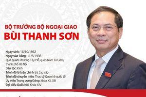 Tóm tắt quá trình công tác của tân Bộ trưởng Bộ Ngoại giao Bùi Thanh Sơn