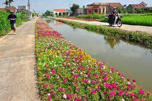 Nam Ðịnh tập trung xây dựng nông thôn mới, đô thị văn minh