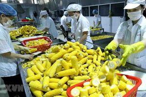 Chiến lược phát triển thị trường bền vững hàng nông sản Việt Nam