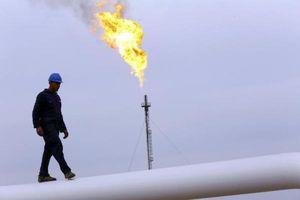 Không có cú sốc giá dầu khi Mỹ và Iran đàm phán hạt nhân