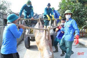 Cả hệ thống chính trị Hà Tĩnh vào cuộc phòng, chống dịch bệnh trên cây trồng, vật nuôi