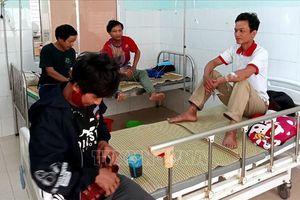 5 bệnh nhân ngộ độc nấm tại Quảng Nam đã dần ổn định sức khỏe