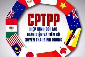 Chỉ 1/20 doanh nghiệp hiểu rõ về cam kết CPTPP