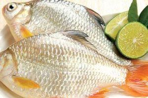 Cách 'đánh bay' mùi tanh của cá, đem rán - nấu hay kho đều ngon