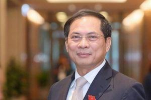 Chân dung tân Bộ trưởng Bộ Ngoại giao Bùi Thanh Sơn