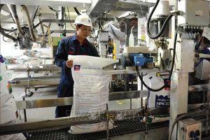Đạm Cà Mau đặt mục tiêu tăng doanh thu 1,8%