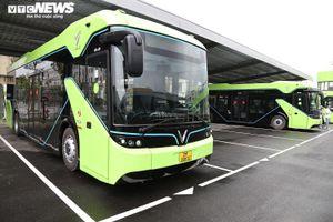 Cộng đồng mạng háo hức mong được trải nghiệm xe buýt điện thông minh VinBus