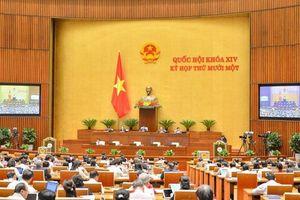 Thông cáo báo chí số 12 kỳ họp thứ mười một, Quốc hội khóa XIV