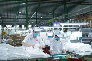 An Tiến Industries (HII): Năm 2021 lên kế hoạch đạt 70 tỷ lợi nhuận và phát hành thêm 4,8 triệu cổ phiếu