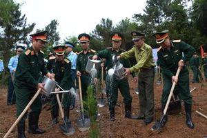 Phát động 'Tết trồng cây đời đời nhớ ơn Bác Hồ' tại Khu di tích K9