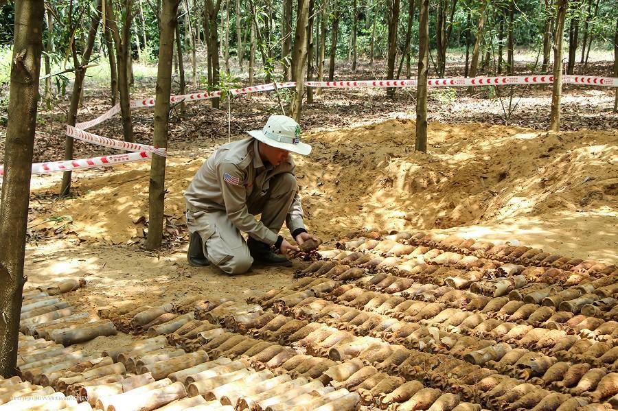 Phát hiện hầm chứa gần 500 quả đạn cối, lựu đạn trong rừng keo