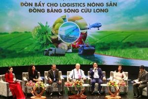 Giải quyết 'bài toán' logistics để mở đường cho nông sản Việt