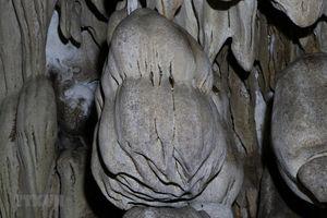 Khám phá vẻ đẹp hang động Hắt Chuông ở tỉnh Điện Biên