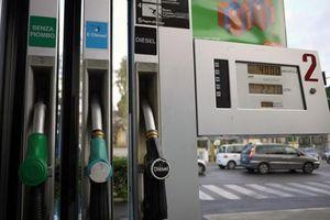 Italy chặn đứng phi vụ gian lận nhiên liệu dính líu đến mafia