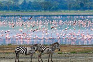 20 địa điểm chụp ảnh đẹp nhất thế giới
