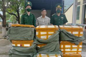 Quảng Ninh: Bắt giữ đối tượng dùng ô tô tải chở 4 tạ nội tạng đông lạnh nhập lậu