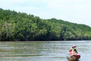 TP.HCM: Đề xuất thành lập Khu bảo tồn biển Cần Giờ