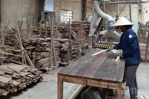 Ngành gỗ nhận 10 dự án FDI trong quý I/2021