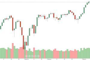 Blog chứng khoán: Hết gánh nặng của trụ, thị trường sẽ ổn