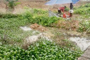 Bắc Giang: Phát hiện một người tử vong do đuối nước