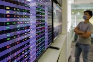 Thị trường chứng khoán bước vào giai đoạn tăng trưởng mới